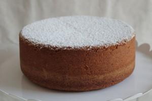X Round Cake Pan Quarts